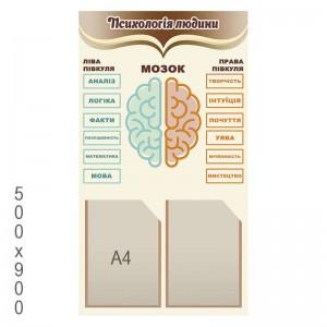 """Стенд """"Психологія людини"""" (Мозок) -    Стенди куточок психолога"""