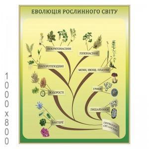 Учебный плакат по биологии -    Плакаты для кабинета биологии