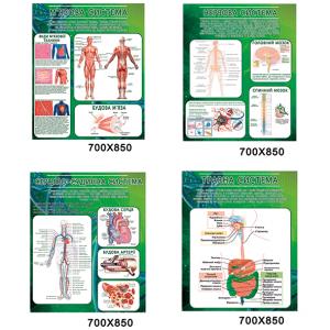 Комплект стендов в кабинет биологии 00815 -    Стенды для кабинета биологии