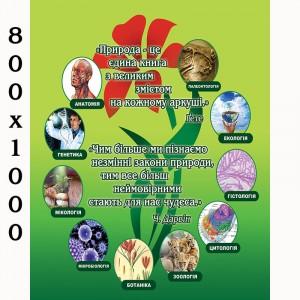 """Плакат по биологии """"Природа"""" -    Плакаты для кабинета биологии"""