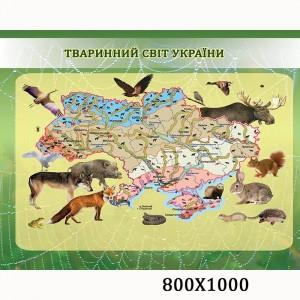 """Плакат по биологии """"Животный мир Украины"""" -    Плакаты для кабинета биологии"""