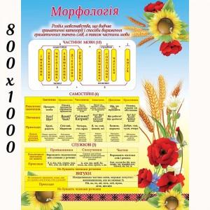 """Плакат """"Морфорогия"""" -    Плакаты для украинского языка и литературы"""