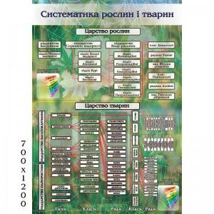 """Стенд """"Систематика растений и животных 0536""""  -    Стенды для кабинета биологии"""