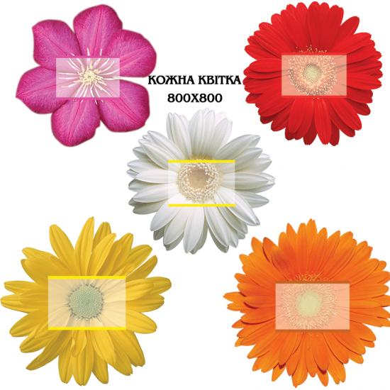 Стенд квітка, колір на вибір ціна за одиницю