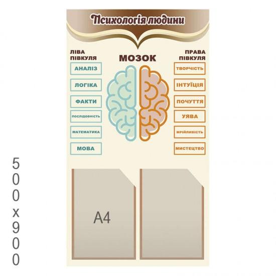 """Стенд """"Психологія людини"""" (Мозок)"""