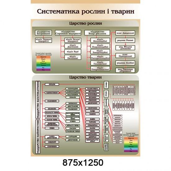 """Стенд """"Систематика рослин і тварин 0133"""""""