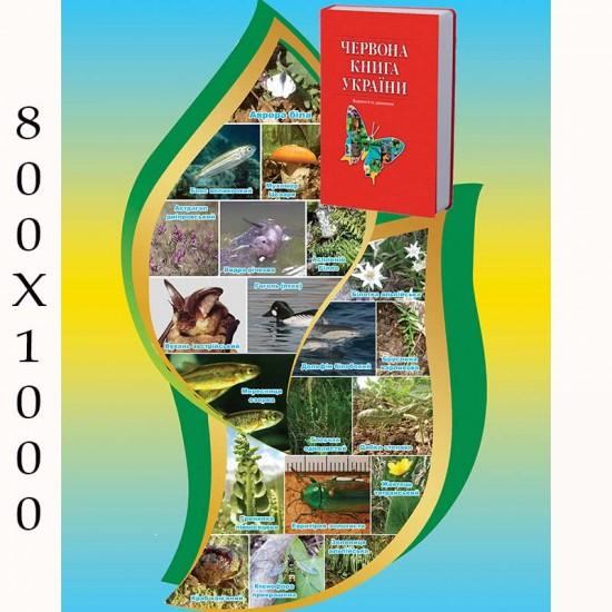 """Плакат з біології """"Червона книга"""""""