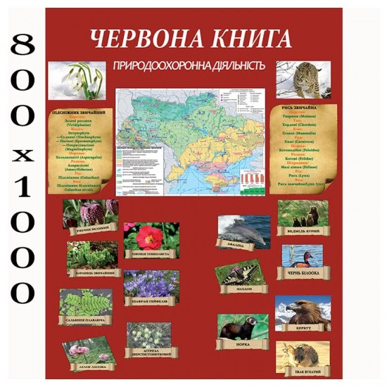 """Плакат з біології """"Природоохорона"""""""