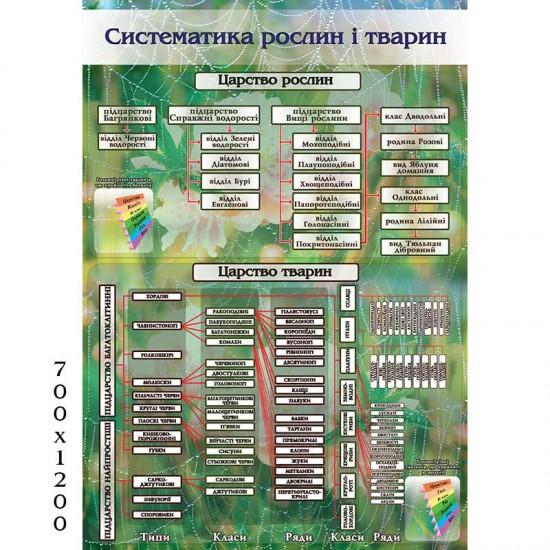 """Стенд """"Систематика рослин і тварин 0536"""""""