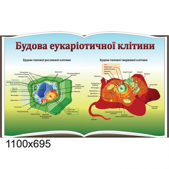 Стенд для кабінету біології